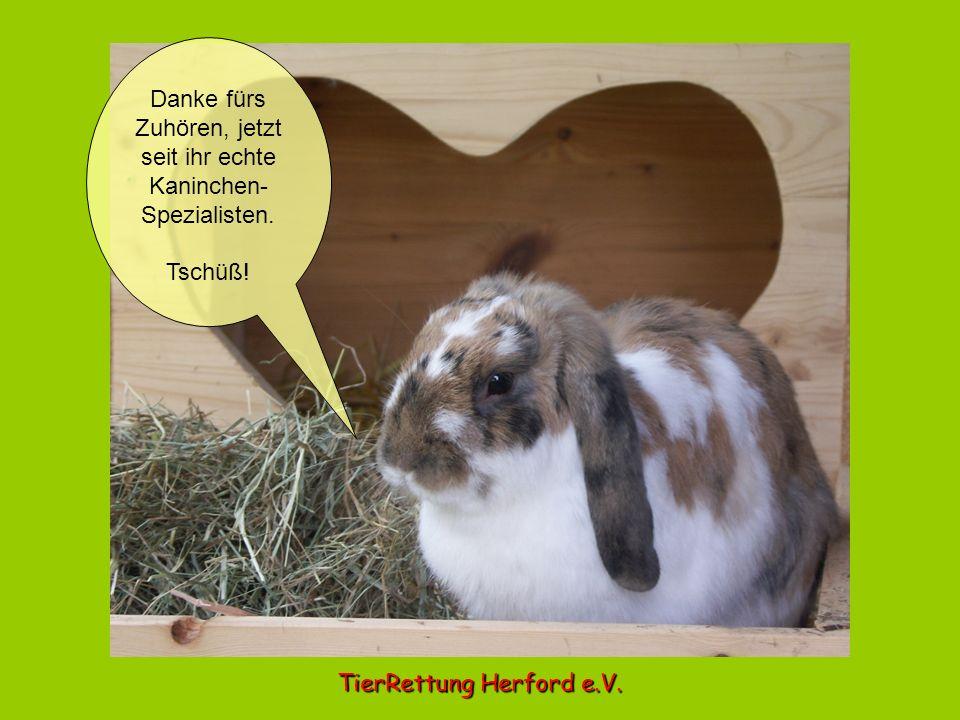 Danke fürs Zuhören, jetzt seit ihr echte Kaninchen- Spezialisten. Tschüß! TierRettung Herford e.V.