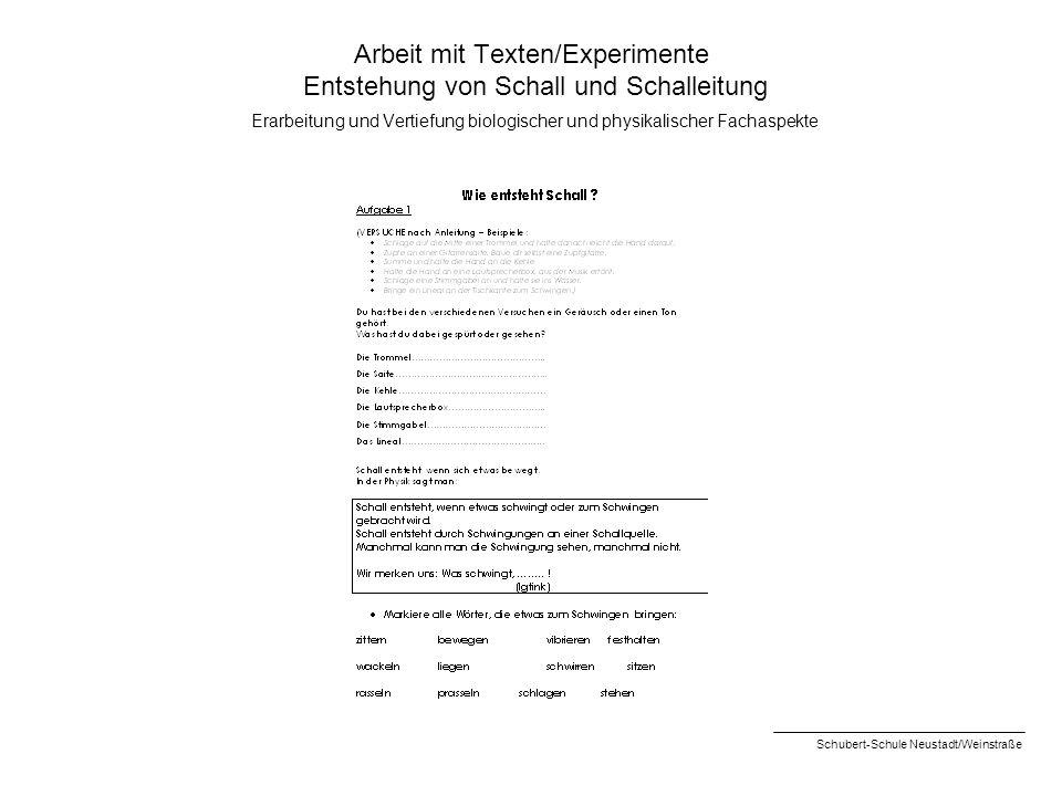 Arbeit mit Texten/Experimente Entstehung von Schall und Schalleitung Erarbeitung und Vertiefung biologischer und physikalischer Fachaspekte Schubert-S