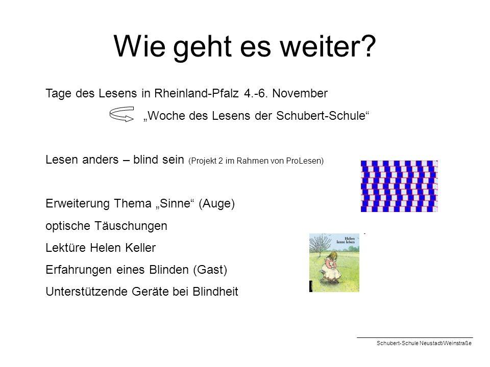 Wie geht es weiter? Tage des Lesens in Rheinland-Pfalz 4.-6. November Woche des Lesens der Schubert-Schule Lesen anders – blind sein (Projekt 2 im Rah