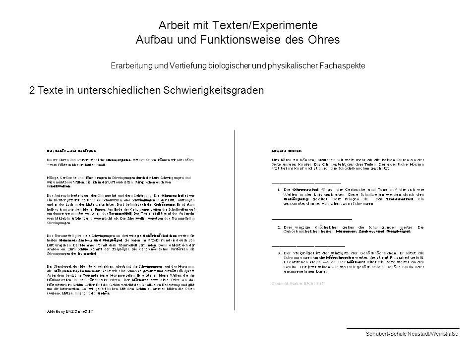 Arbeit mit Texten/Experimente Aufbau und Funktionsweise des Ohres Erarbeitung und Vertiefung biologischer und physikalischer Fachaspekte 2 Texte in un