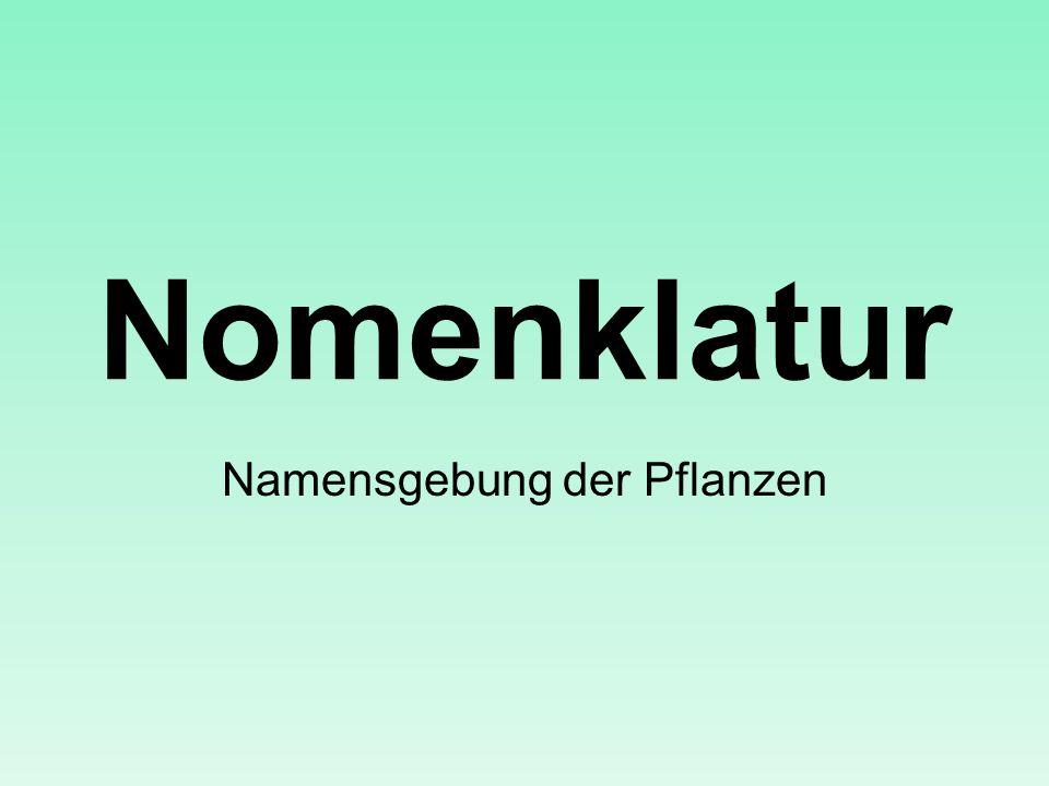 Nomenklatur Namensgebung der Pflanzen
