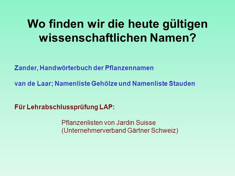 Wo finden wir die heute gültigen wissenschaftlichen Namen? Zander, Handwörterbuch der Pflanzennamen van de Laar; Namenliste Gehölze und Namenliste Sta