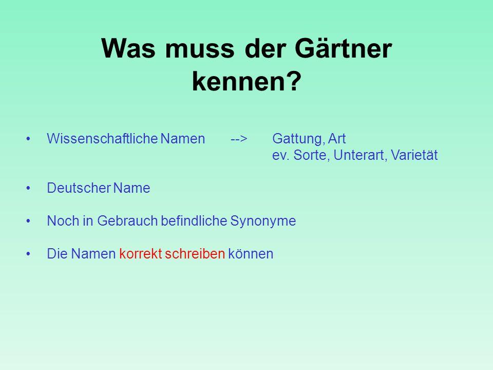 Was muss der Gärtner kennen? Wissenschaftliche Namen -->Gattung, Art ev. Sorte, Unterart, Varietät Deutscher Name Noch in Gebrauch befindliche Synonym