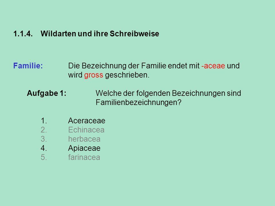 1.1.4. Wildarten und ihre Schreibweise Familie: Die Bezeichnung der Familie endet mit -aceae und wird gross geschrieben. Aufgabe 1: Welche der folgend