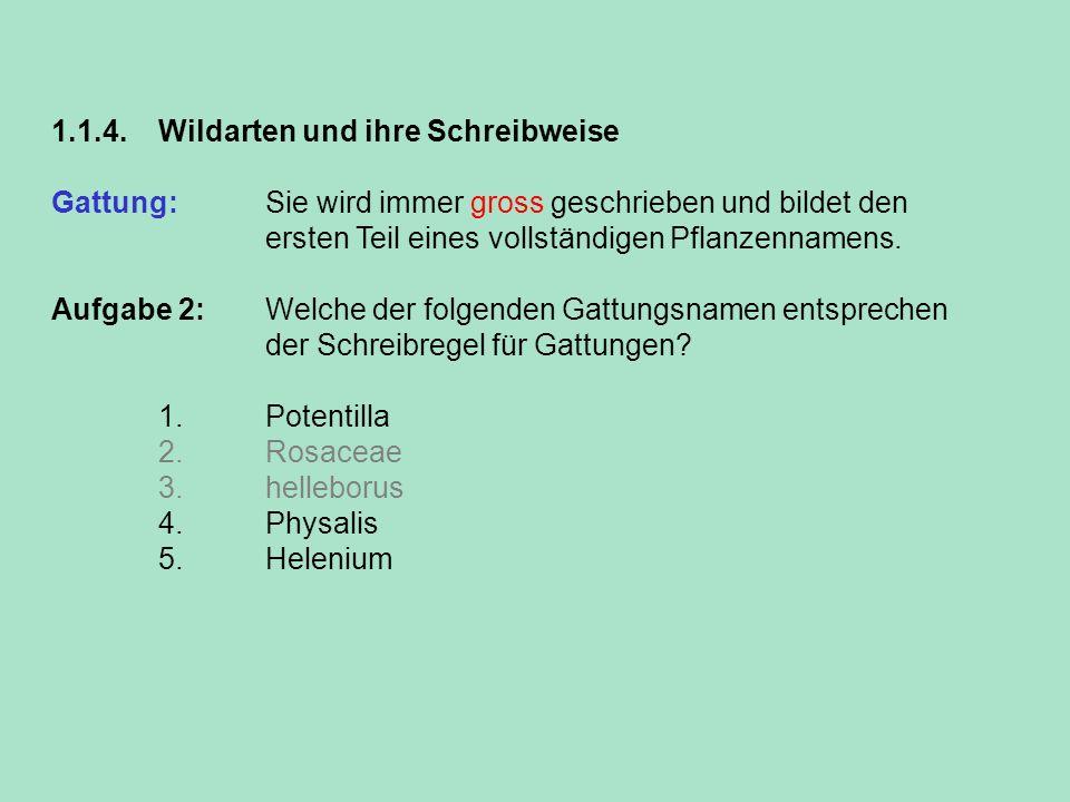 1.1.4. Wildarten und ihre Schreibweise Gattung: Sie wird immer gross geschrieben und bildet den ersten Teil eines vollständigen Pflanzennamens. Aufgab