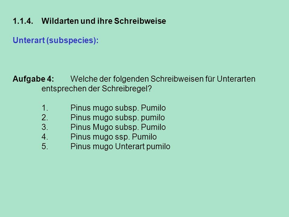 1.1.4. Wildarten und ihre Schreibweise Unterart (subspecies): Sie wird immer klein mit dem vorangestellten Zusatz subsp. geschrieben. Aufgabe 4: Welch