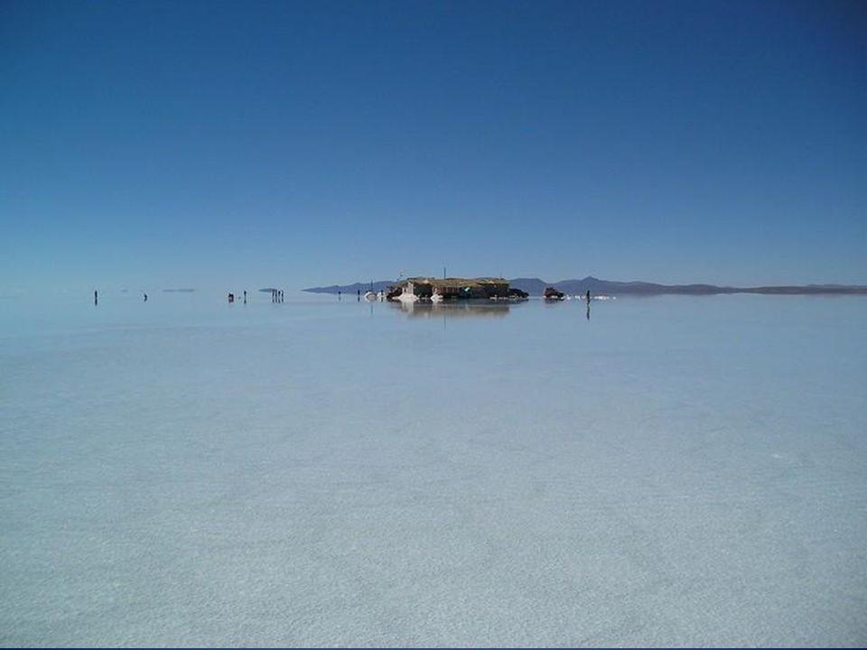Es sind etwa 11 Schichten Salz die zwischen 2 und 10 Meter dick sind. Die oberflächliche Kruste ist etwa 10 Meter tief während die maximale Tiefe des