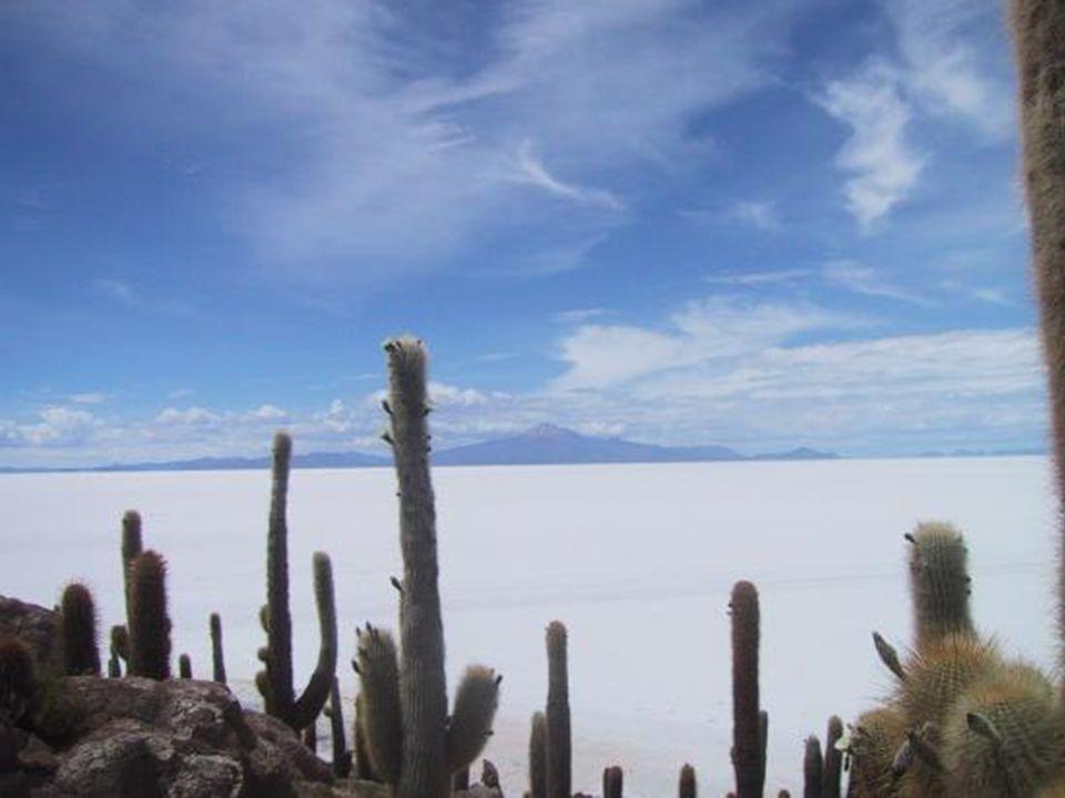 Es wird geschätzt, dass der Salzsee von Uyuni etwa 10 Milliarden Tonnen Salz enthält.