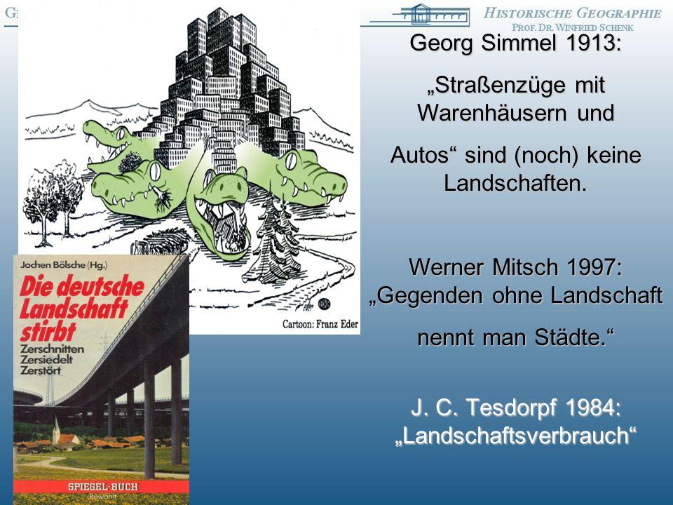 Georg Simmel 1913: Straßenzüge mit Warenhäusern und Autos sind (noch) keine Landschaften.