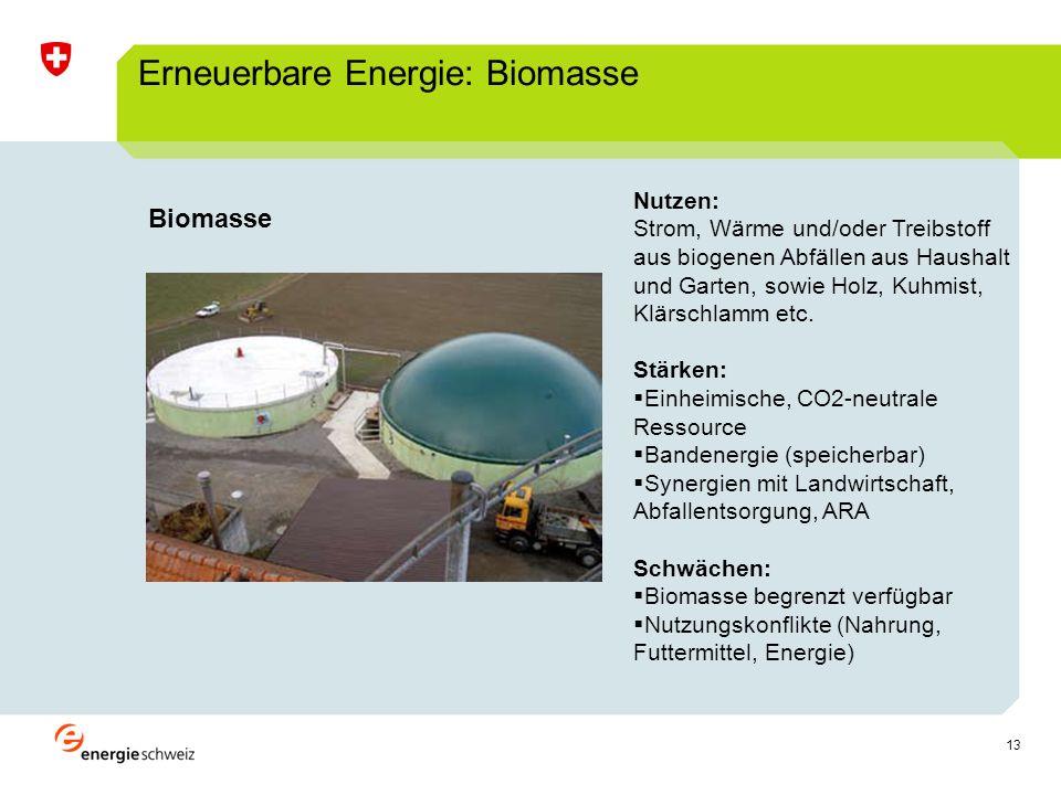 13 Erneuerbare Energie: Biomasse Nutzen: Strom, Wärme und/oder Treibstoff aus biogenen Abfällen aus Haushalt und Garten, sowie Holz, Kuhmist, Klärschlamm etc.