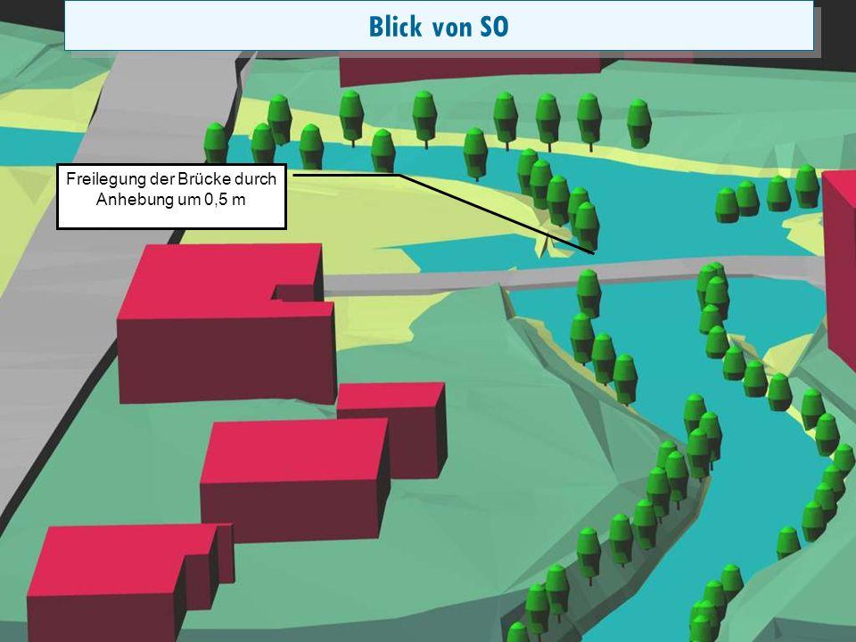 Folie 21 Überflutung mit Rückstau und Wechselsprung Spiegelabsenkung durch Sohlveränderung Blick von SO Freilegung der Brücke durch Anhebung um 0,5 m