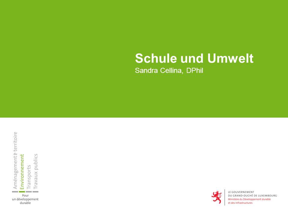 Schule und Umwelt Sandra Cellina, DPhil