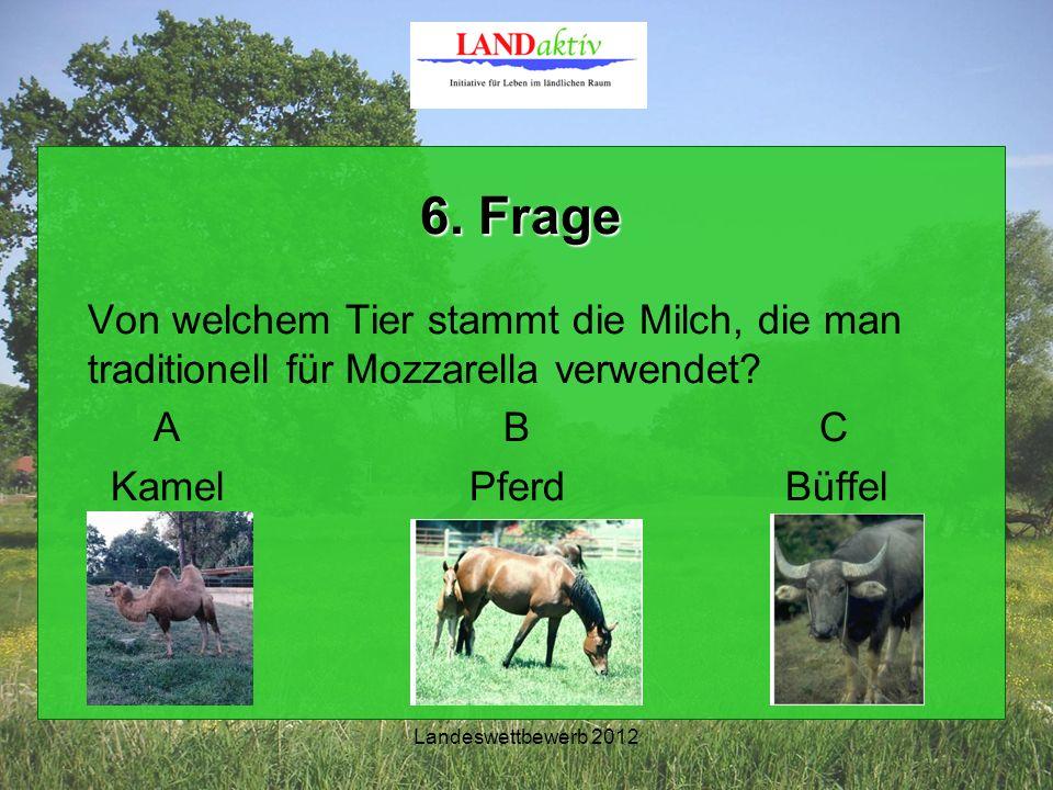 Landeswettbewerb 2012 6. Frage Von welchem Tier stammt die Milch, die man traditionell für Mozzarella verwendet? A B C Kamel PferdBüffel
