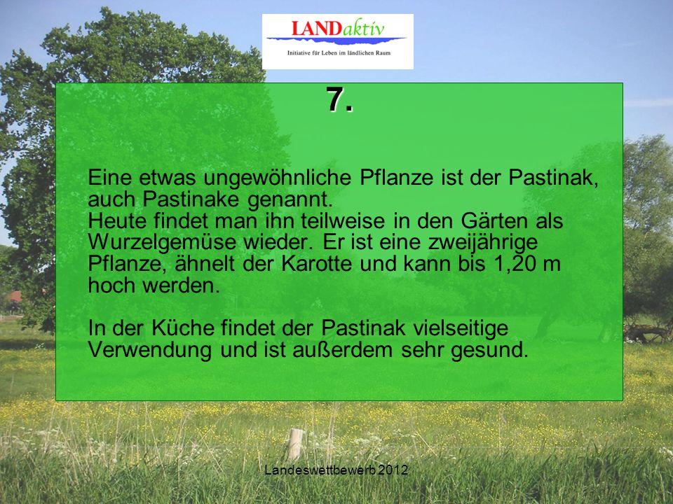 Landeswettbewerb 2012 7. Eine etwas ungewöhnliche Pflanze ist der Pastinak, auch Pastinake genannt.