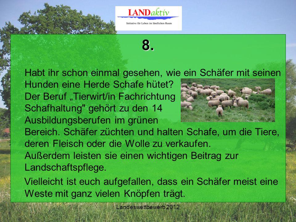 Landeswettbewerb 2012 8. Habt ihr schon einmal gesehen, wie ein Schäfer mit seinen Hunden eine Herde Schafe hütet? Der Beruf Tierwirt/in Fachrichtung