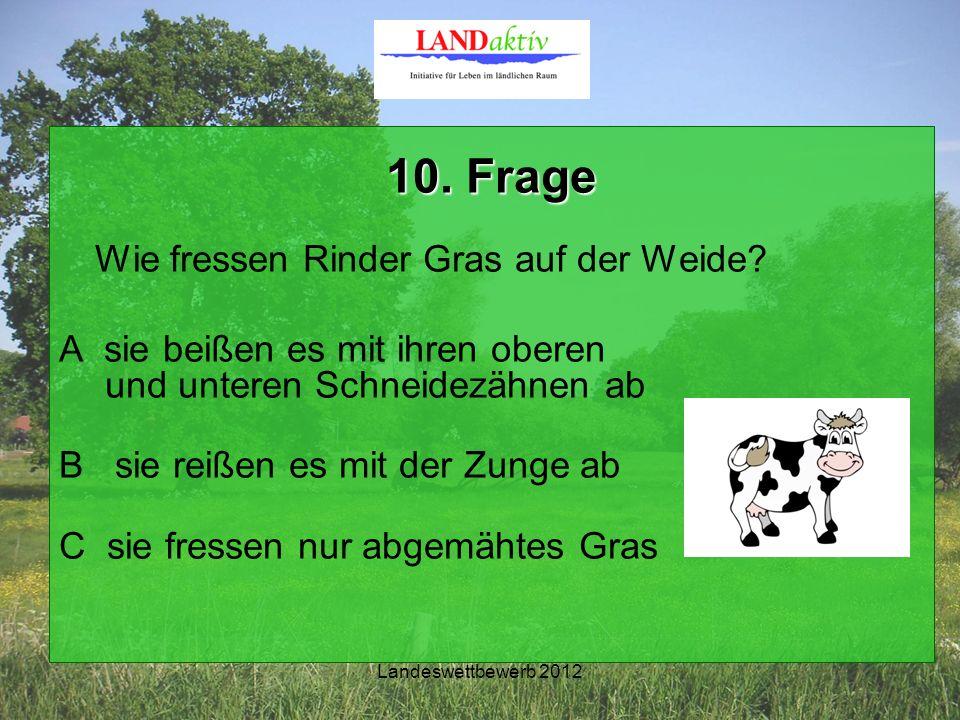 Landeswettbewerb 2012 10. Frage Wie fressen Rinder Gras auf der Weide.