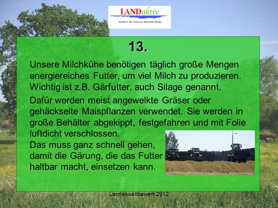 Landeswettbewerb 2012 13.