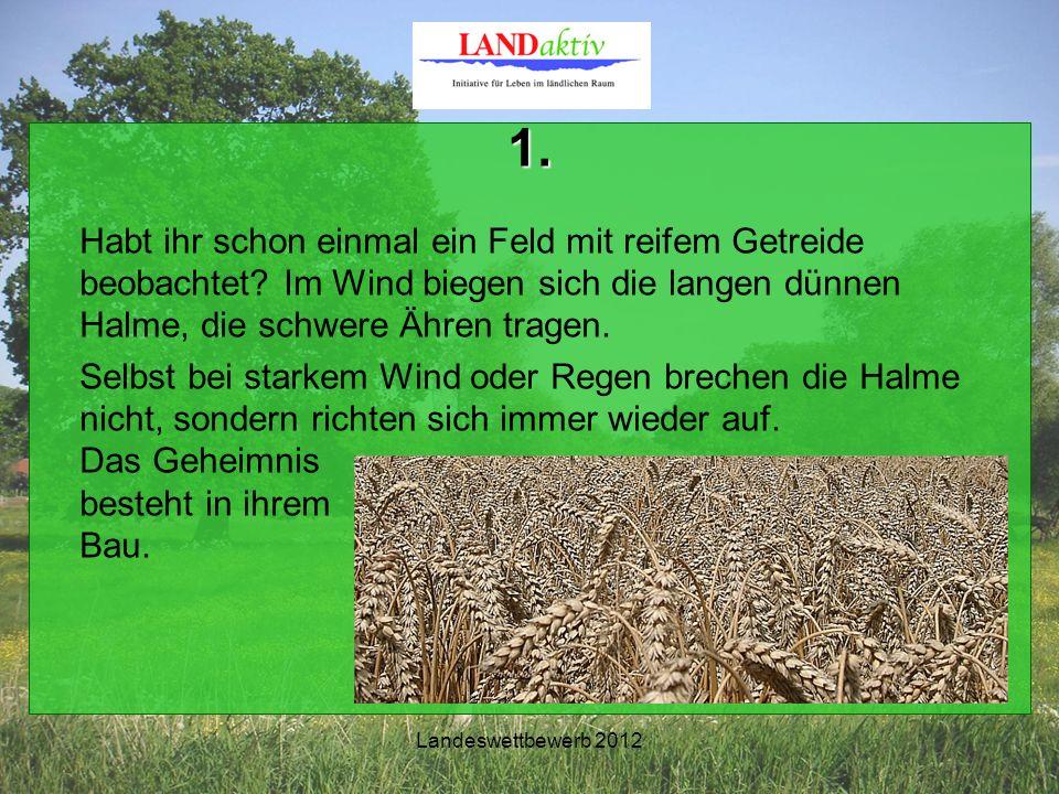 Landeswettbewerb 2012 1. Habt ihr schon einmal ein Feld mit reifem Getreide beobachtet.
