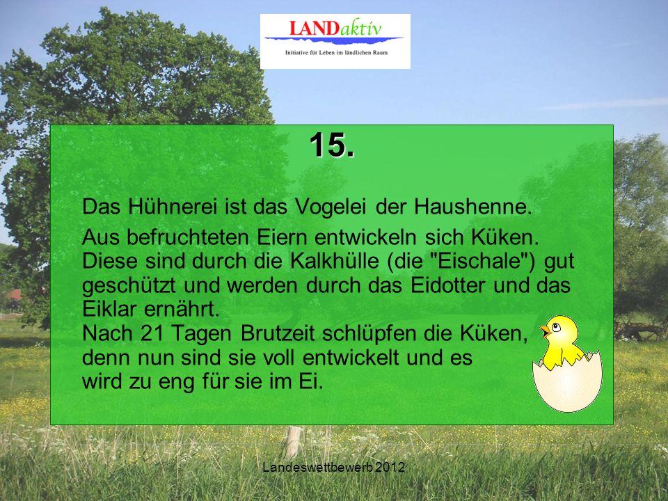 Landeswettbewerb 2012 15. Das Hühnerei ist das Vogelei der Haushenne.