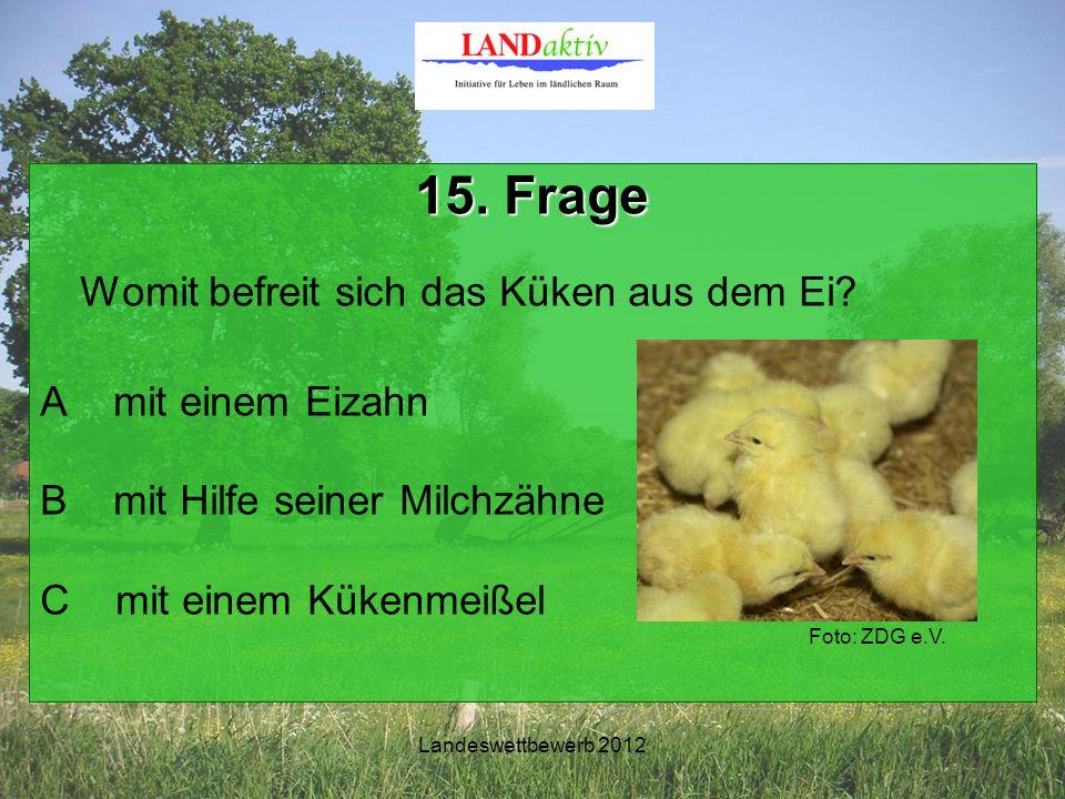 Landeswettbewerb 2012 15. Frage Womit befreit sich das Küken aus dem Ei.