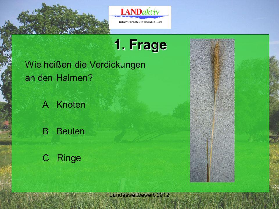 Landeswettbewerb 2012 1. Frage Wie heißen die Verdickungen an den Halmen? A Knoten B Beulen C Ringe