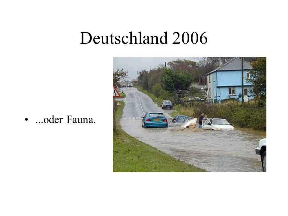 Deutschland 2006...oder Fauna.