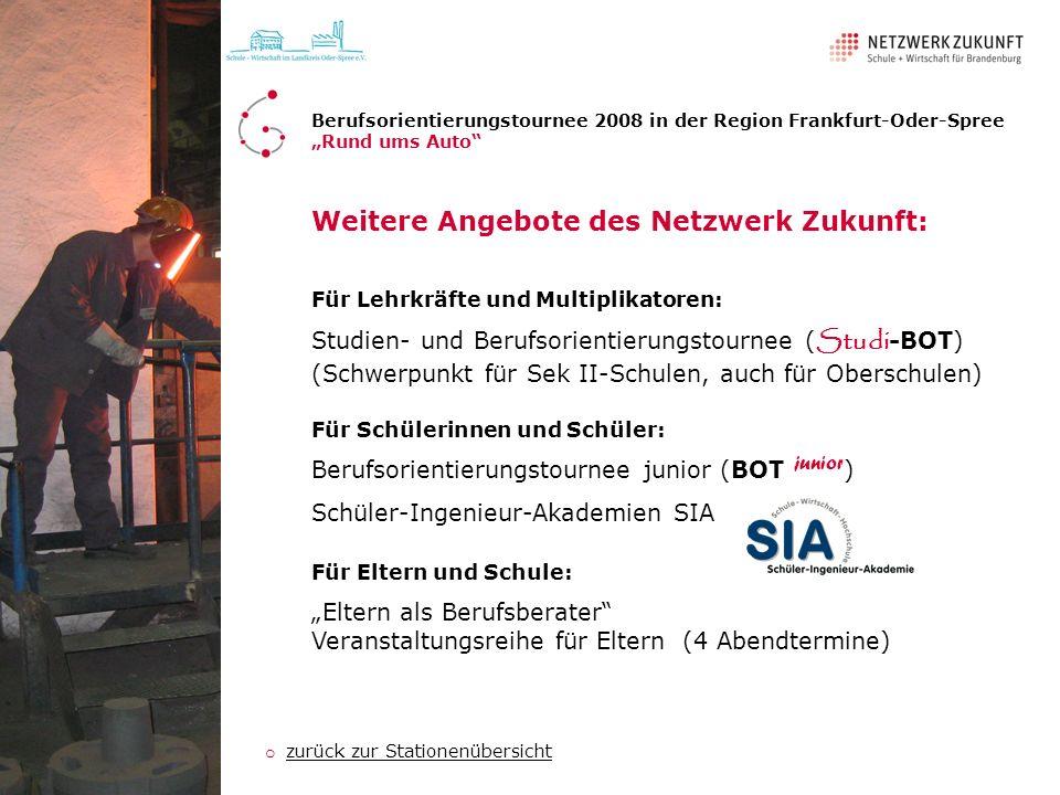 Weitere Angebote des Netzwerk Zukunft: Für Schülerinnen und Schüler: Berufsorientierungstournee junior (BOT junior ) Schüler-Ingenieur-Akademien SIA F