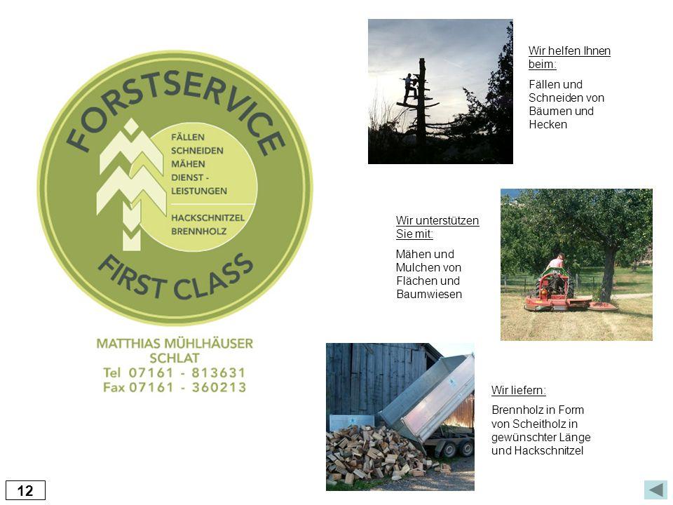 12 Wir liefern: Brennholz in Form von Scheitholz in gewünschter Länge und Hackschnitzel Wir unterstützen Sie mit: Mähen und Mulchen von Flächen und Ba
