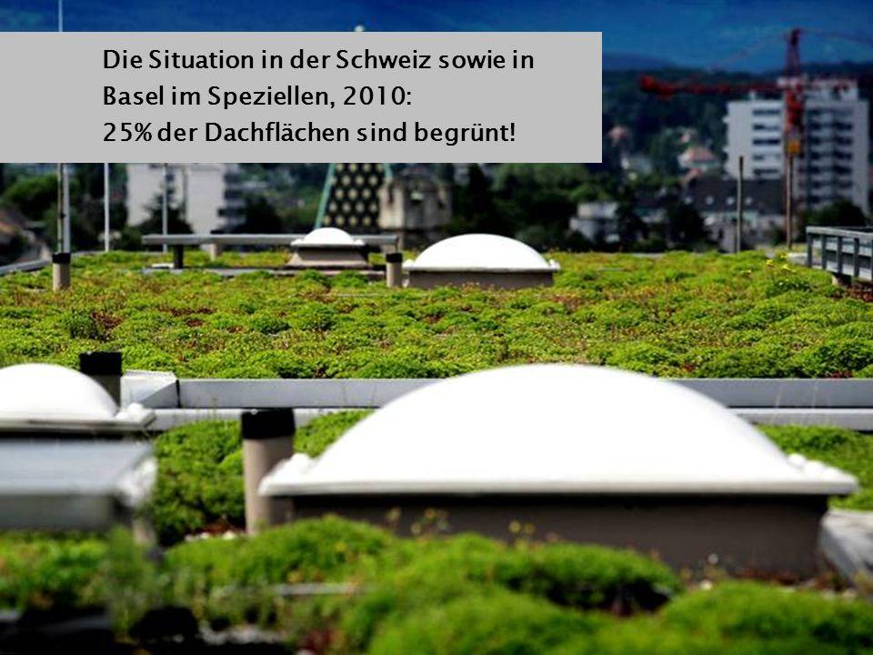 Die Situation in der Schweiz sowie in Basel im Speziellen, 2010: 25% der Dachflächen sind begrünt!