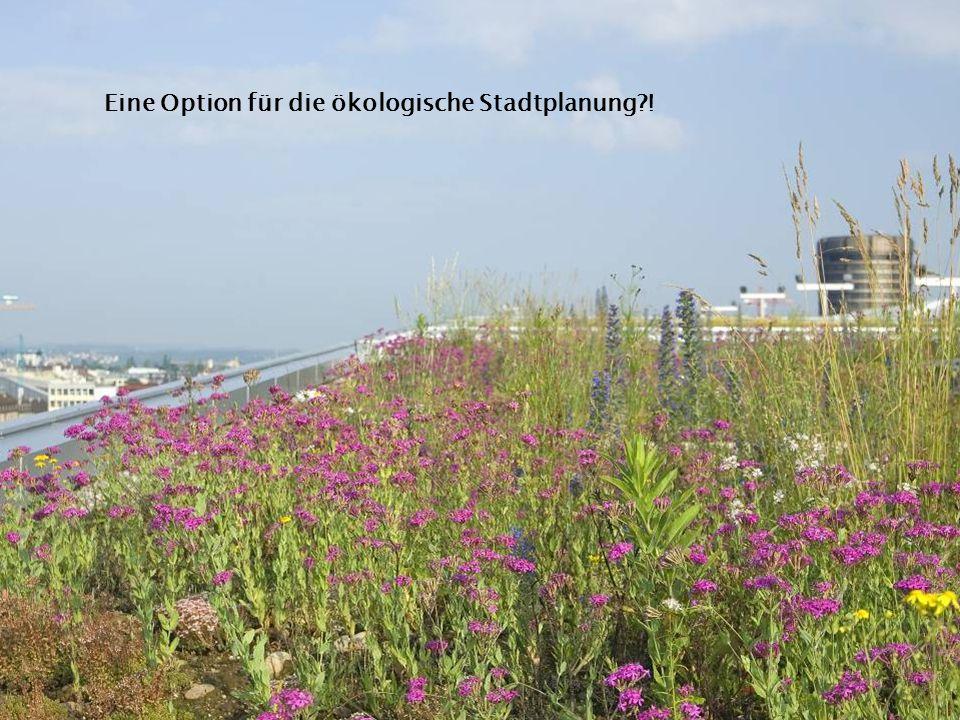 Eine Option für die ökologische Stadtplanung?!