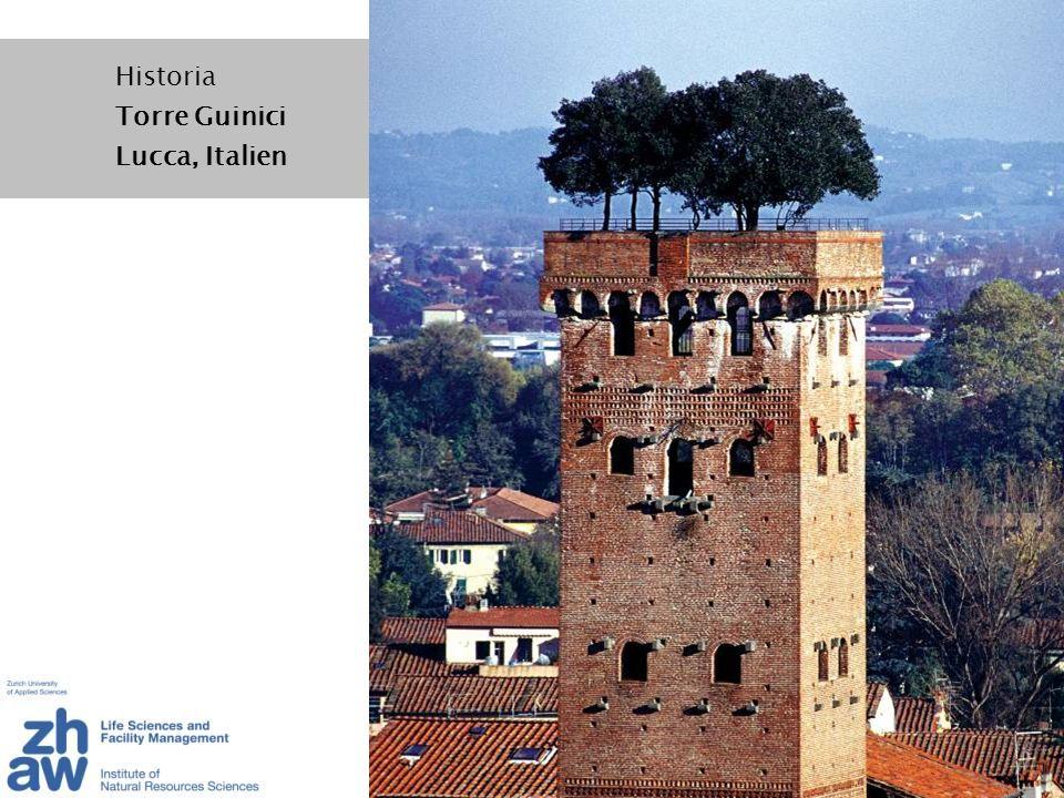 Antike - Die hängenden Gärten der Semiramis: Dachgarten