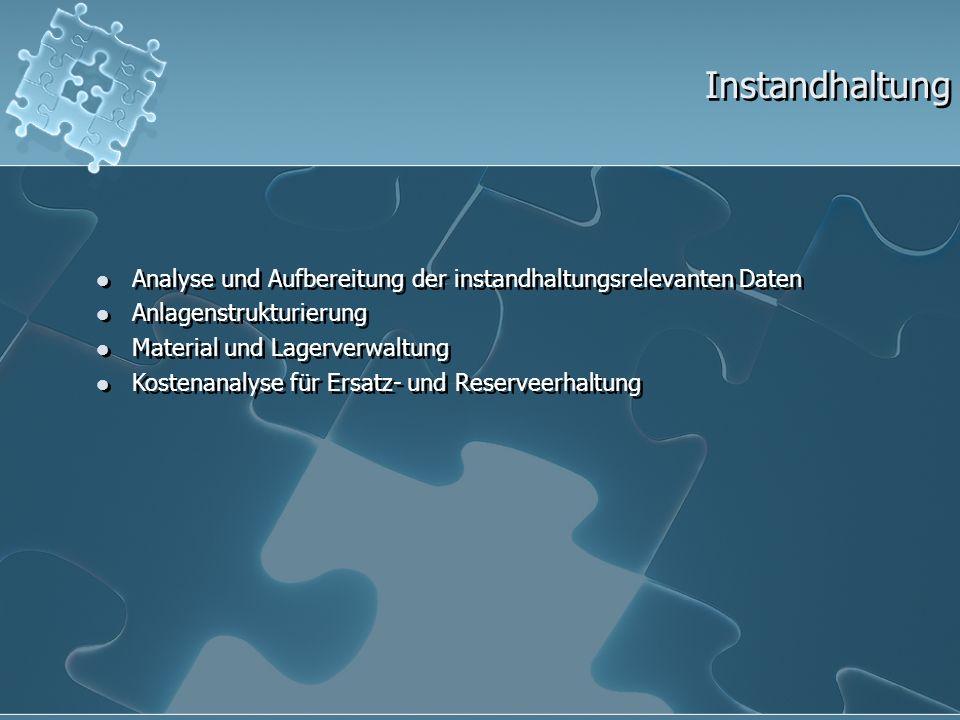 Instandhaltung Analyse und Aufbereitung der instandhaltungsrelevanten Daten Anlagenstrukturierung Material und Lagerverwaltung Kostenanalyse für Ersat
