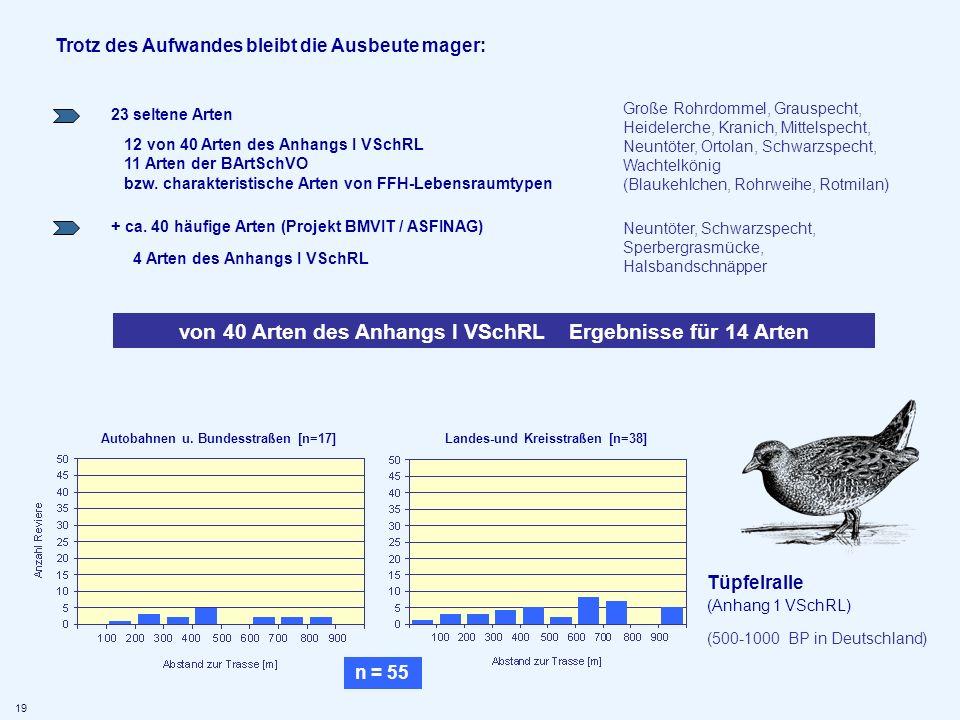 + ca. 40 häufige Arten (Projekt BMVIT / ASFINAG) 4 Arten des Anhangs I VSchRL von 40 Arten des Anhangs I VSchRL Ergebnisse für 14 Arten Neuntöter, Sch