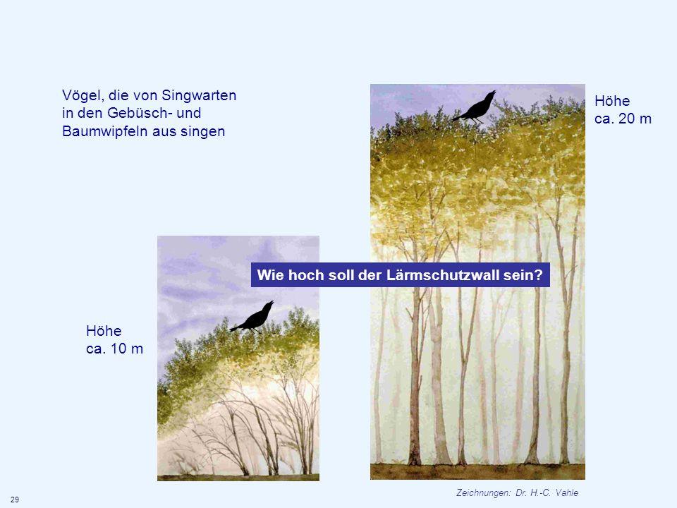 Vögel, die von Singwarten in den Gebüsch- und Baumwipfeln aus singen Höhe ca. 20 m Höhe ca. 10 m 29 Wie hoch soll der Lärmschutzwall sein? Zeichnungen