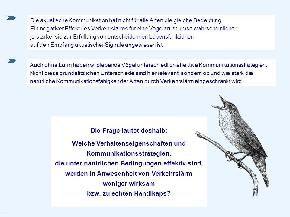 Auch ohne Lärm haben wildlebende Vögel unterschiedlich effektive Kommunikationsstrategien. Nicht diese grundsätzlichen Unterschiede sind hier relevant