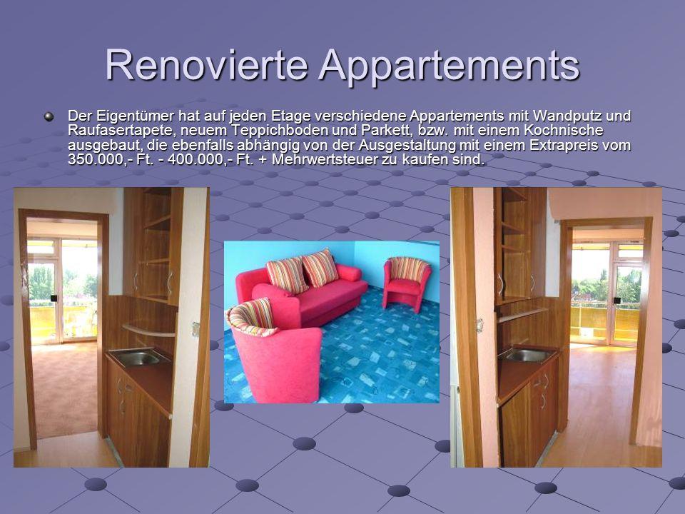 Renovierte Appartements Der Eigentümer hat auf jeden Etage verschiedene Appartements mit Wandputz und Raufasertapete, neuem Teppichboden und Parkett, bzw.