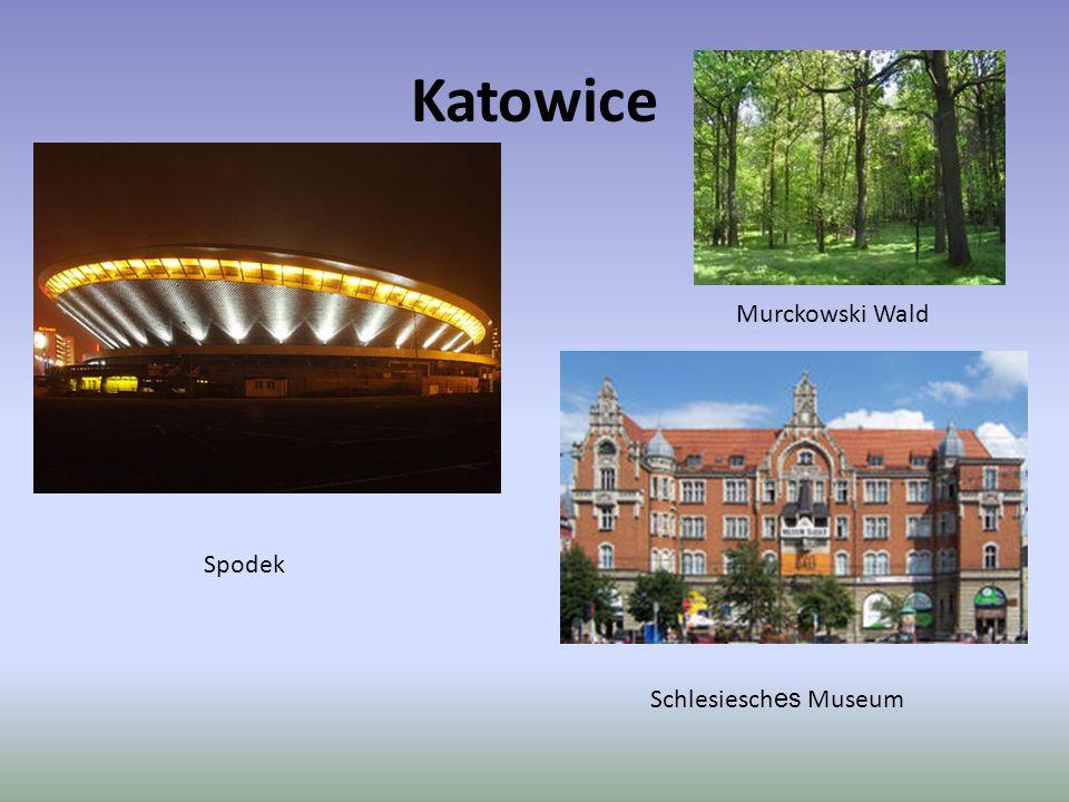 Katowice Spodek Murckowski Wald Schlesiesch es Museum