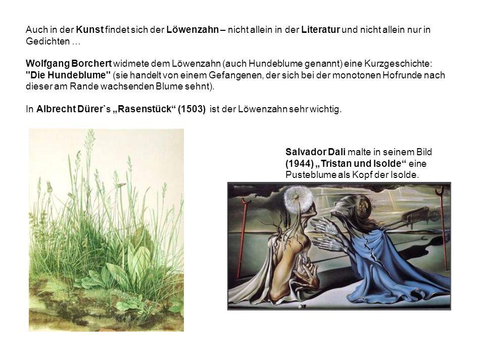 Auch in der Kunst findet sich der Löwenzahn – nicht allein in der Literatur und nicht allein nur in Gedichten … Wolfgang Borchert widmete dem Löwenzahn (auch Hundeblume genannt) eine Kurzgeschichte: Die Hundeblume (sie handelt von einem Gefangenen, der sich bei der monotonen Hofrunde nach dieser am Rande wachsenden Blume sehnt).