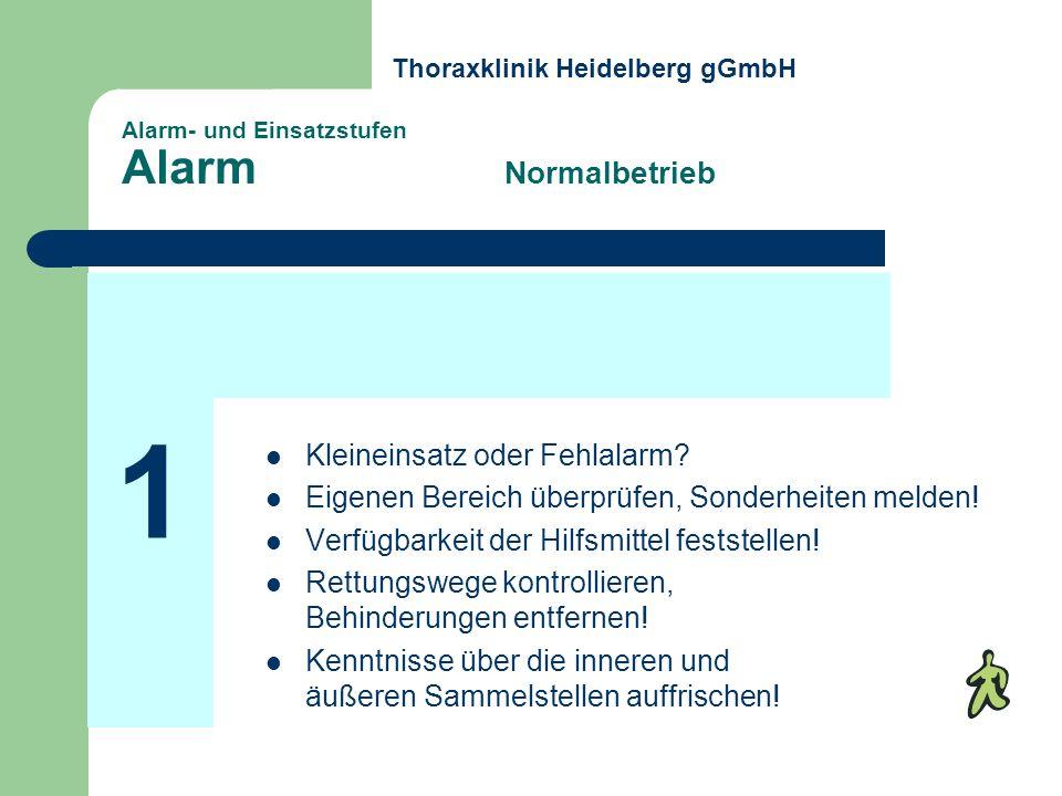 Alarm- und Einsatzstufen Alarm Normalbetrieb Kleineinsatz oder Fehlalarm? Eigenen Bereich überprüfen, Sonderheiten melden! Verfügbarkeit der Hilfsmitt
