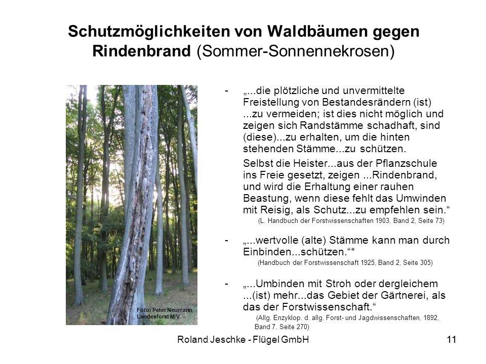 11Roland Jeschke - Flügel GmbH11 Schutzmöglichkeiten von Waldbäumen gegen Rindenbrand (Sommer-Sonnennekrosen) -...die plötzliche und unvermittelte Freistellung von Bestandesrändern (ist)...zu vermeiden; ist dies nicht möglich und zeigen sich Randstämme schadhaft, sind (diese)...zu erhalten, um die hinten stehenden Stämme...zu schützen.
