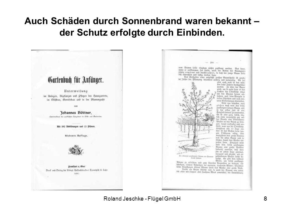 8Roland Jeschke - Flügel GmbH8 Auch Schäden durch Sonnenbrand waren bekannt – der Schutz erfolgte durch Einbinden.