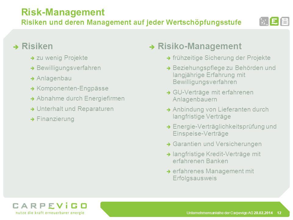 Unternehmensanleihe der Carpevigo AG 28.02.201412 Risk-Management Risiken und deren Management auf jeder Wertschöpfungsstufe Risiken zu wenig Projekte