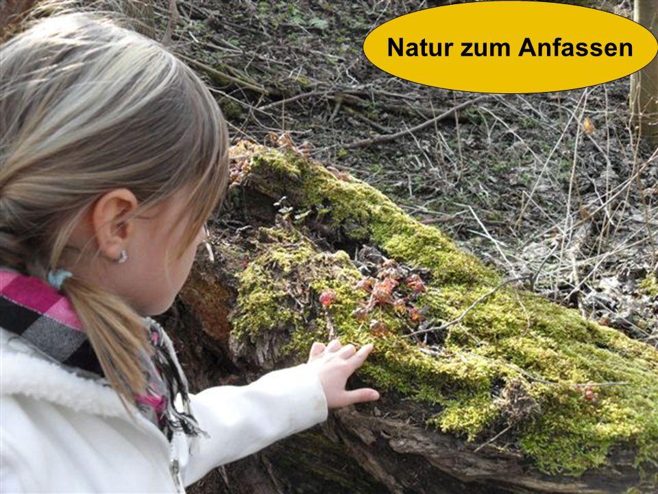 Natur zum Anfassen