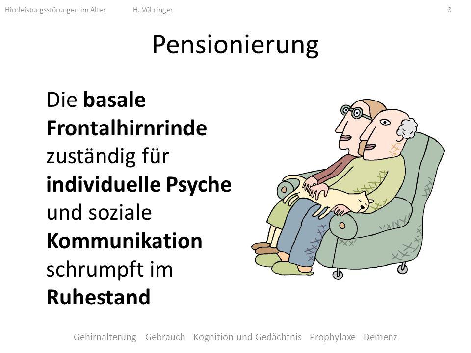 Pensionierung Die basale Frontalhirnrinde zuständig für individuelle Psyche und soziale Kommunikation schrumpft im Ruhestand Hirnleistungsstörungen im Alter H.