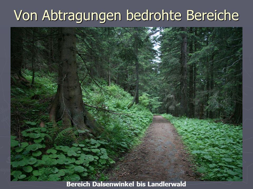30 Von Abtragungen bedrohte Bereiche Bereich Dalsenwinkel bis Landlerwald