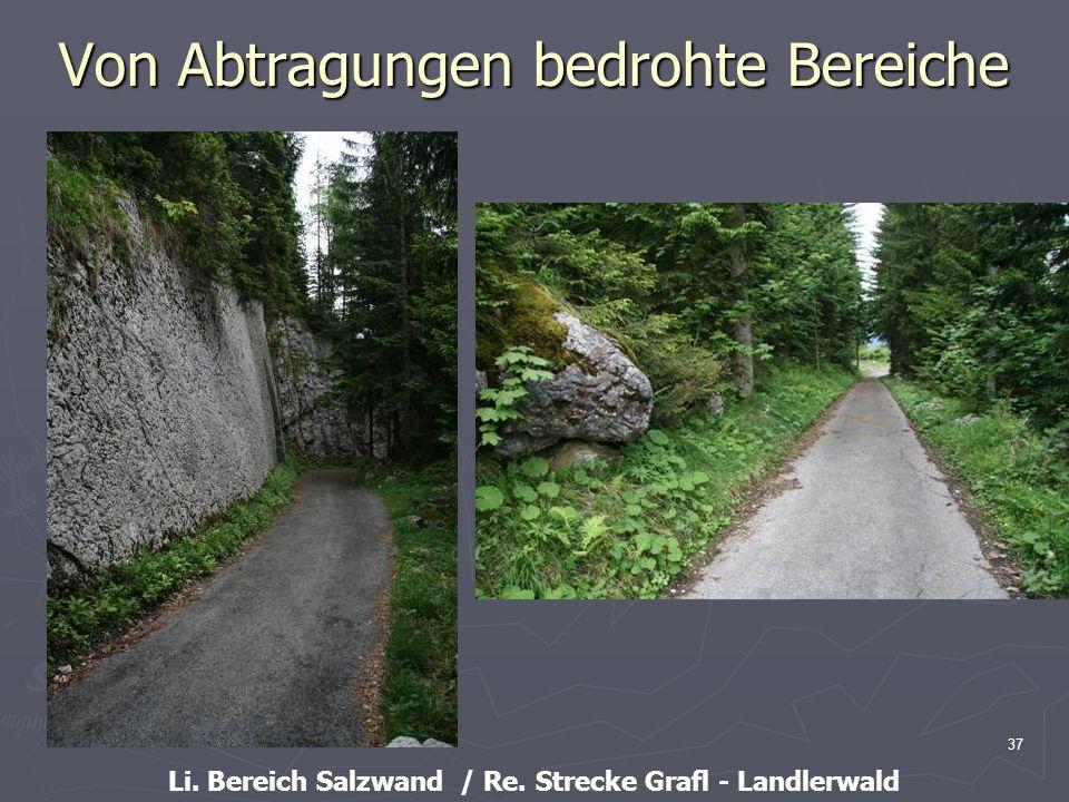 37 Von Abtragungen bedrohte Bereiche Li. Bereich Salzwand / Re. Strecke Grafl - Landlerwald