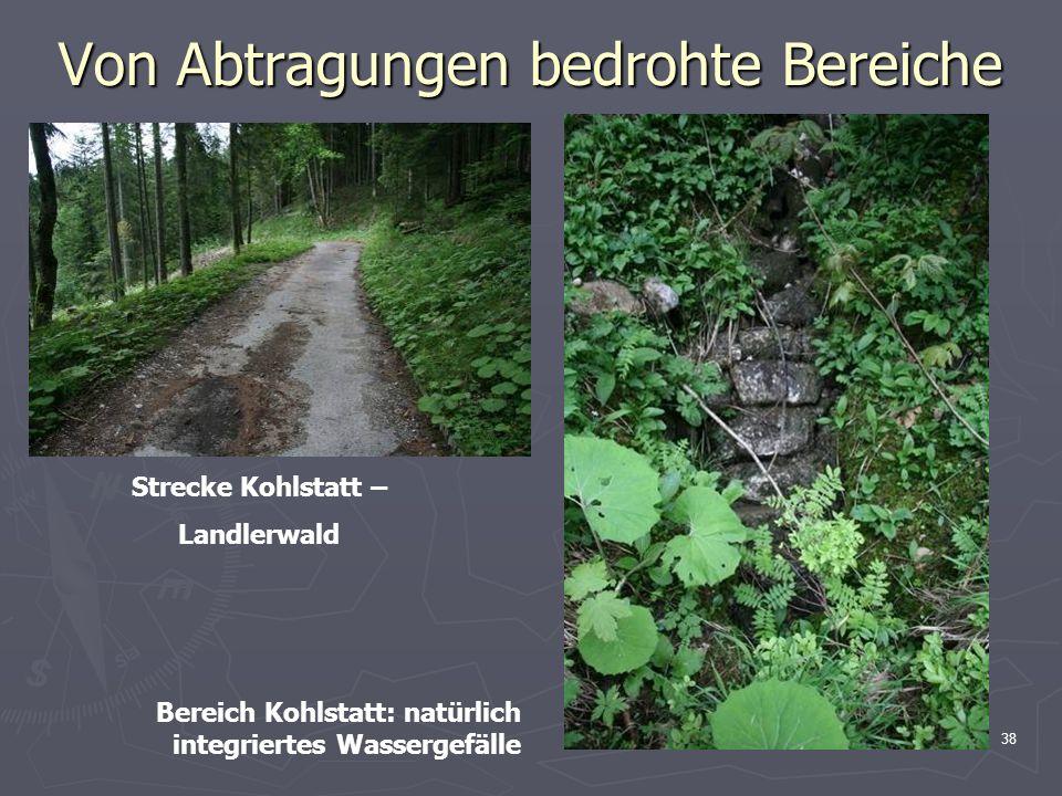 38 Von Abtragungen bedrohte Bereiche Strecke Kohlstatt – Landlerwald Bereich Kohlstatt: natürlich integriertes Wassergefälle