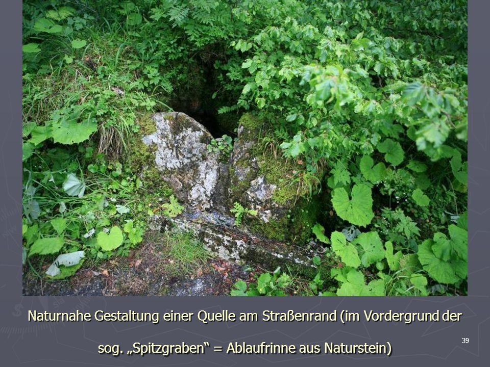 39 Naturnahe Gestaltung einer Quelle am Straßenrand (im Vordergrund der sog. Spitzgraben = Ablaufrinne aus Naturstein)