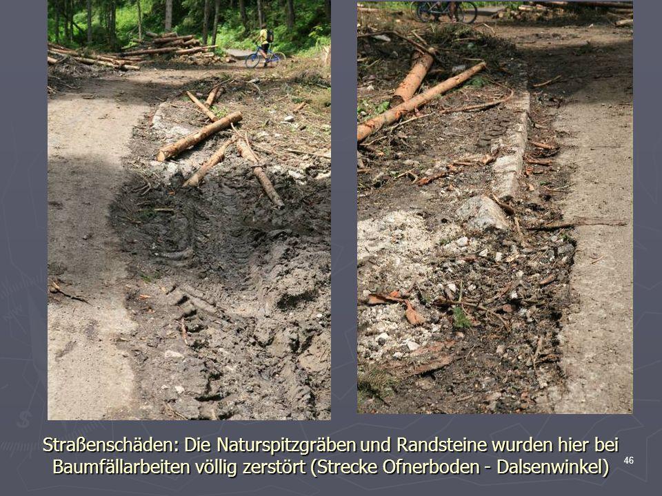 46 Straßenschäden: Die Naturspitzgräben und Randsteine wurden hier bei Baumfällarbeiten völlig zerstört (Strecke Ofnerboden - Dalsenwinkel)