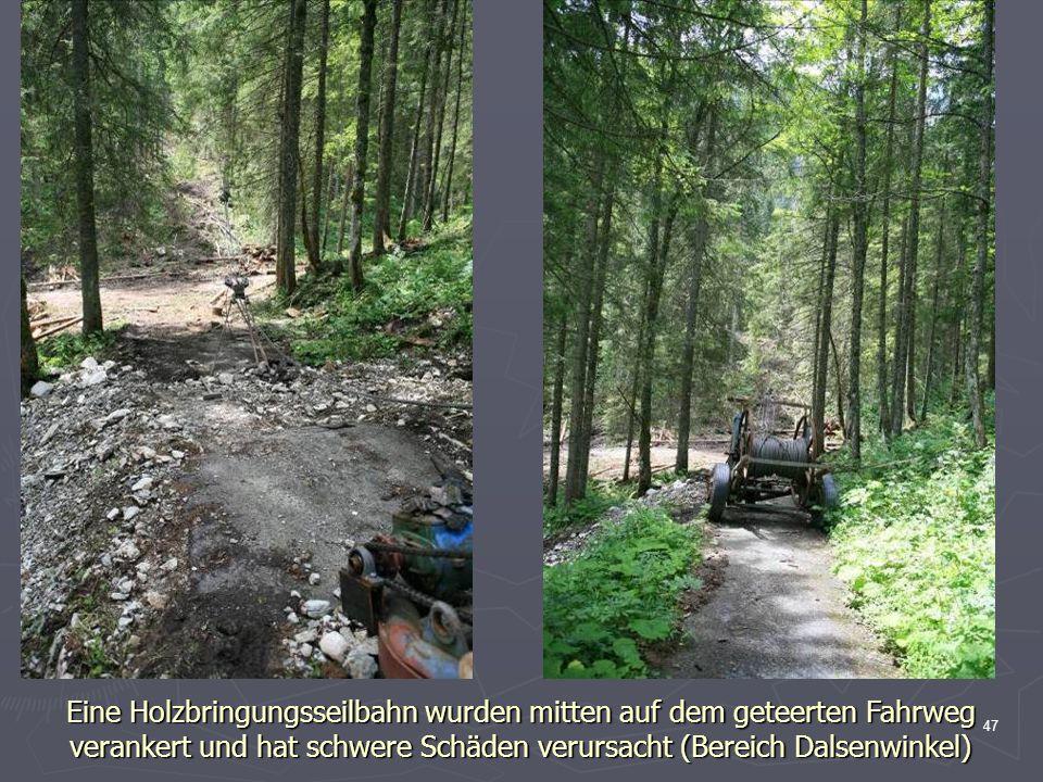 47 Eine Holzbringungsseilbahn wurden mitten auf dem geteerten Fahrweg verankert und hat schwere Schäden verursacht (Bereich Dalsenwinkel)
